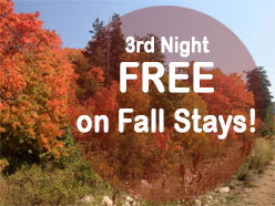 3rd-night-free-fall-stay