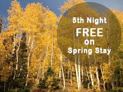 5th night free