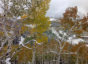 Park City Utah Photo Gallery